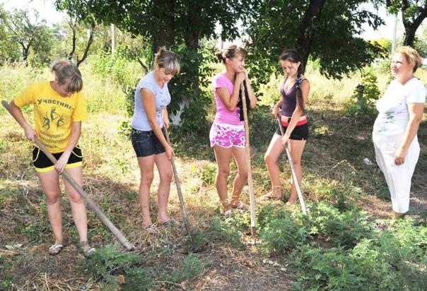 ЗАКОННА ЛИ ЛЕТНЯЯ ОТРАБОТКА (ПРАКТИКА) В ШКОЛЕ Многие российские школы до сих пор практикуют летние работы, обязывающие школьников приходить на различные мероприятия для работы во благо