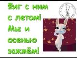 doc9646441_474128175.mp4