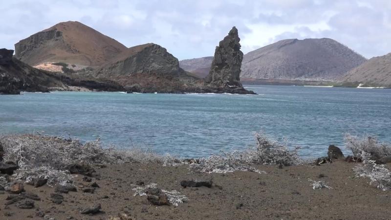 Галапагос - видео экскурсия в HD c дрона (квадрокоптера)