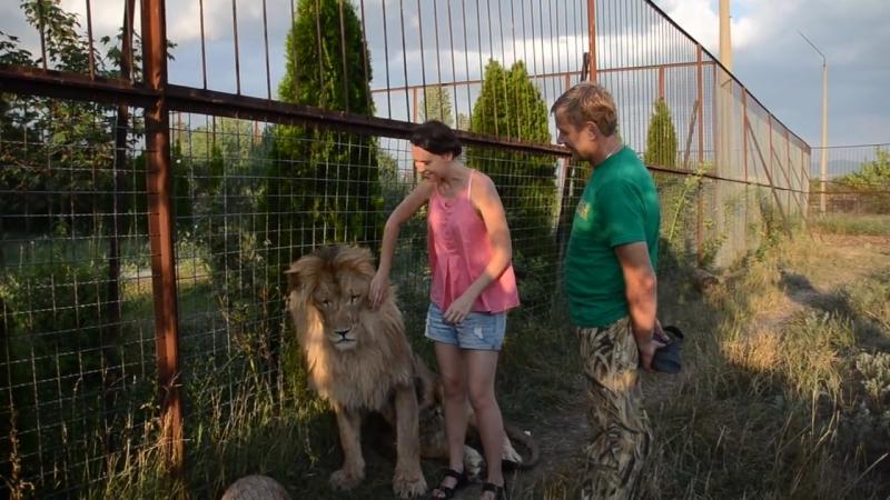Фото-сессия льва Олежки и его поклонниц _)) Тайган .Крым