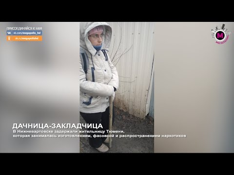 Мегаполис - Дачница-закладчица - Нижневартовск