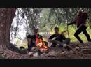 Forest Trip Terekhov Kirill