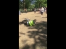 Lad jumps over the sign board and falls face first