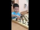 Шахматы в детском садике «Лимпопо»