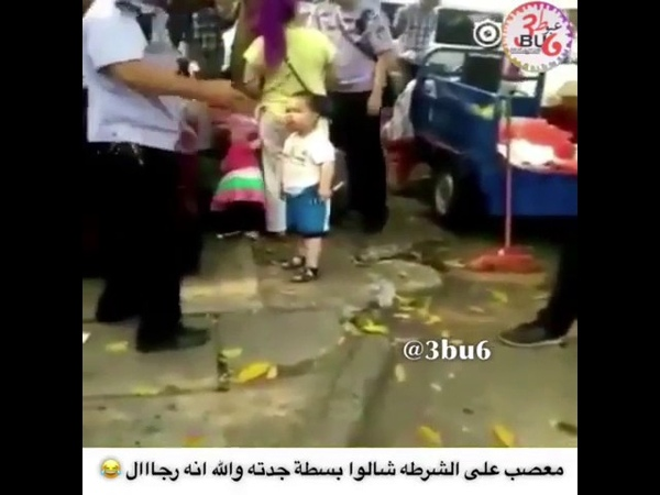 👊 ШОК! 3 летний малыш из Китая, отчаянно защищает свою беззащитную бабушку, от полицейских с помощью трубы и кулаков