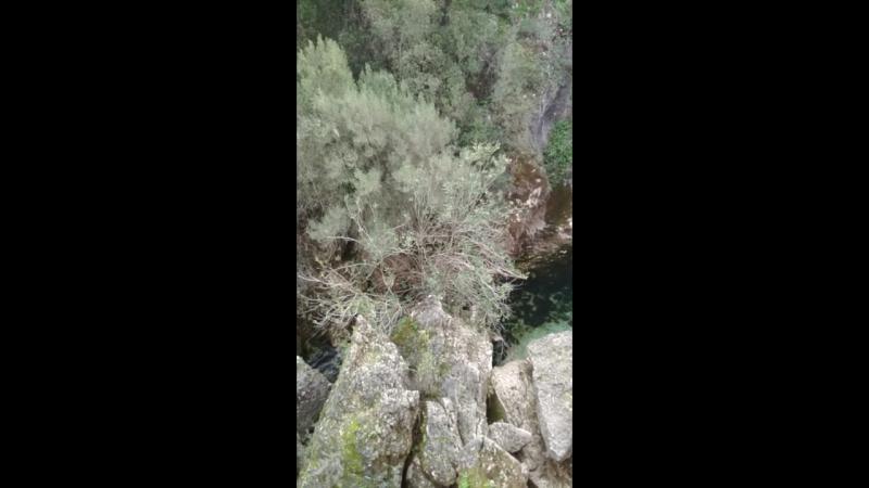 Sorgenti Su Gologone Sardegna