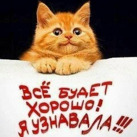 Радуйтесь жизни... Смейтесь от счастья...