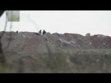 Сирия.22-01-2018.Снайпер боевиков Джейш аль Иза застрелил командира САА на севере провинции Хама