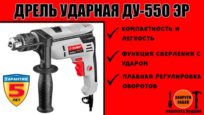 Дрель ударная ЗУБР ДУ-550 ЭР