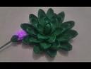 Paper Succulents Cách làm hoa sen đá bằng giấy nhún