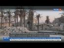 Белые каски поторопились списать удар США по мечети на Россию
