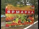 28 сентября в Старобешевском районе прошла продовольственная ярмарка