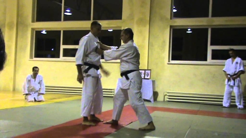 Мотоха Йошин рю Дзю Дзюцу. ріо ері дорі - коте гаєши. (Jiu Jitsu seminar)