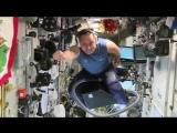 Российский космонавт Антон Шкаплеров пролетел верхом на пылесосе по Международной космической станции.