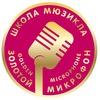 Школа мюзикла Золотой Микрофон