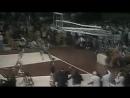 Баскетбол СССР США 1972 г. олимпиада финальный матч USA - USSR 1972 Basketball Olympic gameДвижение в верх