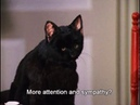 Сабрина маленькая ведьма | Все моменты с котом Селем (Салем) 2 часть