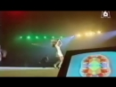 Snap Feat. Summer - The Power (Live Concert 90s Exclusive Techno-Eurodance At Dance Machine 6)