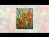 Невероятно красивая музыка - Легран (Саксофон)-Michel Legrand #Музыка
