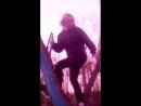 скачки по синему дереву