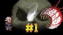 ТЕМНАЯ ДУША || Terraria Dark Souls MOD 1