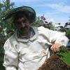Пчеловод Рязанцев