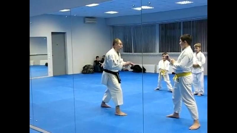 Шотокан каратэ Сергей Жуков, Обнинск (Shotokan karate, seminar).