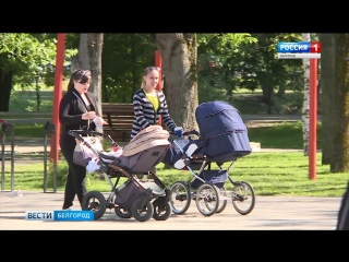 ГТРК Белгород - Активисты движения