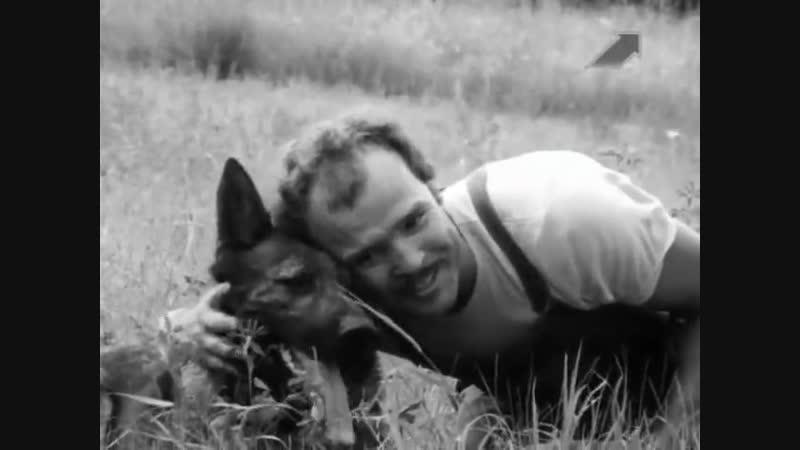 Кантор - собака детектив 1 серия (1976г)