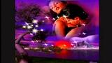 Michael Larsen - Die letzten Flamingos (discomix) .mp4) HD
