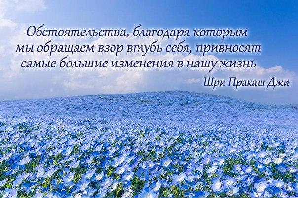Фото -63596863