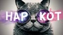 Приколы с котами. Смешные Кошки, Котики и Коты 2018. MalderShow -10 серия Перезалив