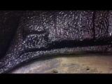 Great Wall Hover H3 жидкие подкрылки - это отличное решение для наружной шумоизоляции и антикор арок