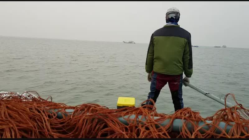 корея у моря