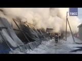 Что известно о пожаре под Новосибирском