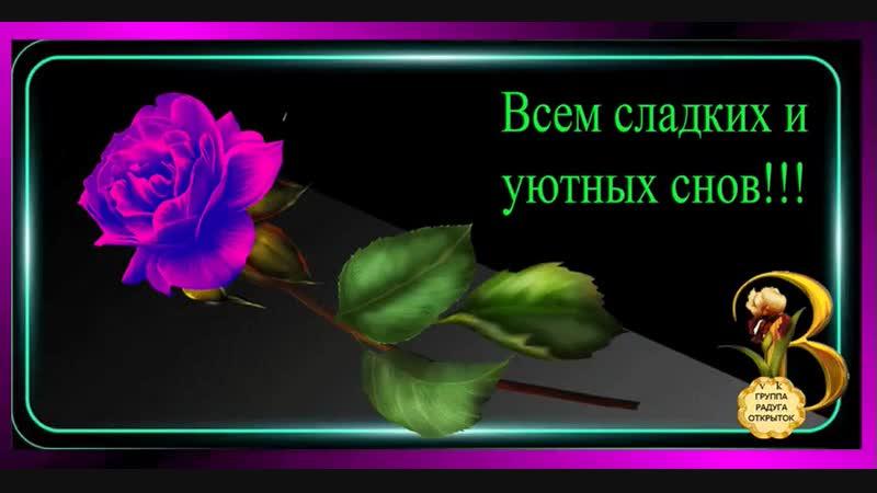 Doc308355082_481633773.mp4