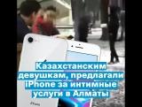 Казахстанским девушкам предлагали iPhone за интимные услуги в Алматы