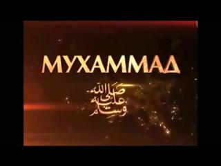 Хьехам До слез просьба нашего Пророка (Мир ему).mp4