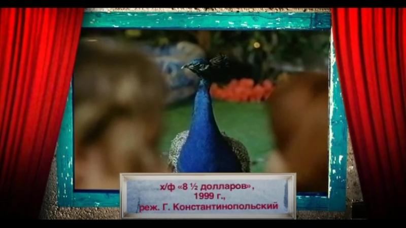 История российского юмора 13 1999 год