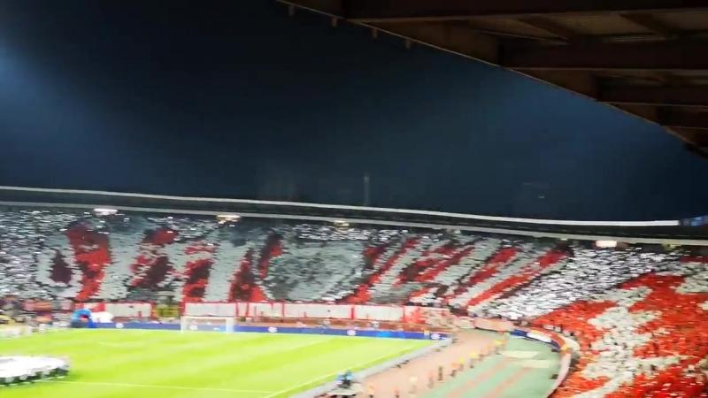 Болельщики Црвены Звезды перед матчем с Наполи