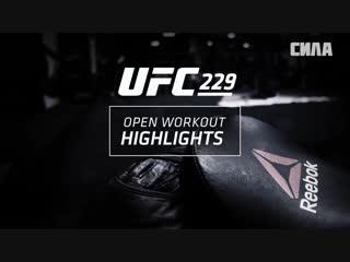 UFC 229 Khabib vs McGregor - Open Workout Highlights