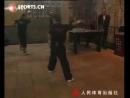 Chuan Long Shi Ba Ge Choy Lee Fut Master Chen Yong Fa