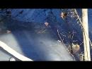 В США аллигаторы вмерзли в лед из за невиданных морозов