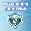 """Футбольная Академия """"АВАНГАРД"""" Курск"""