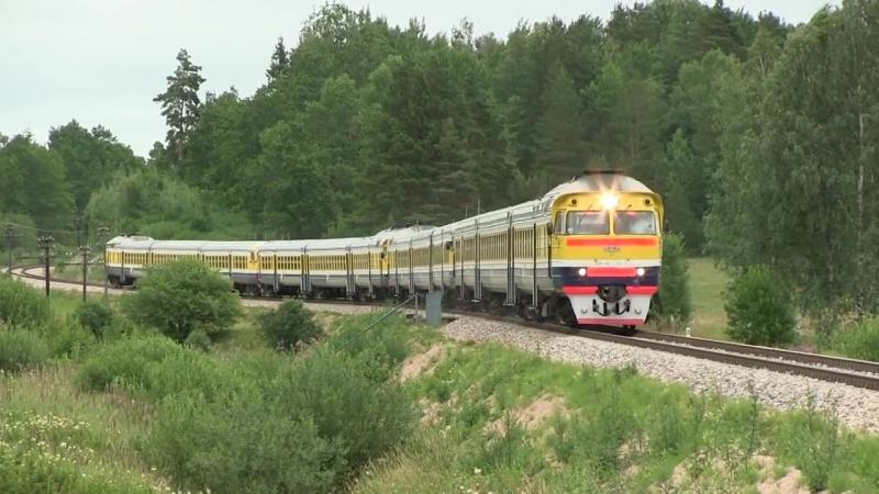 12-вагонный дизель-поезд ДР1А