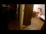 Задержание участников этнической преступной группы в Петербурге