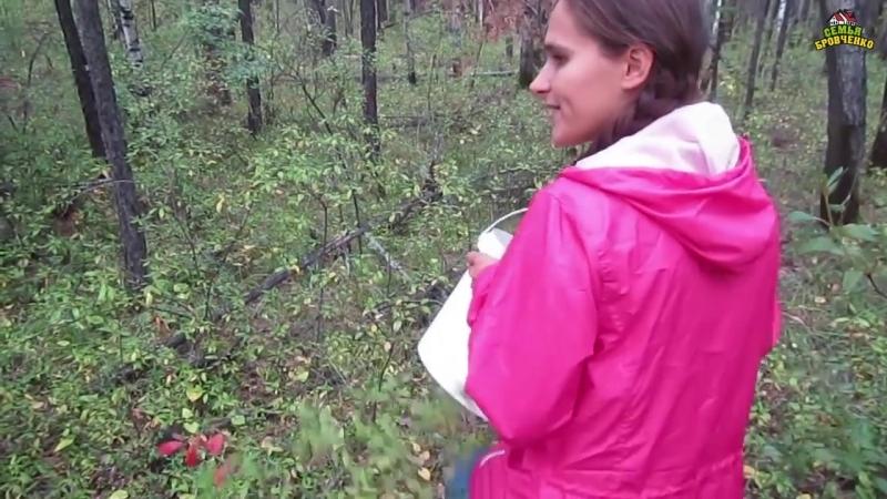 Собираем маслята. Поиски рыжиков и др. грибов. (08.18г.) Семья Бровченко