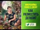 Как Разместить Депозит на Кредитно-Биржевой Платформе Choice e-credit\ Демидова Наталья