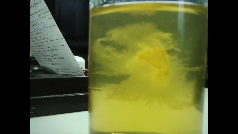 Мицелий на жидкой питательной среде
