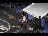 SWF The End (Crazy Smasher vs Tiger Blade Deatmatch)